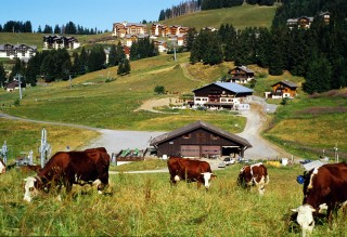 Die Bergstation