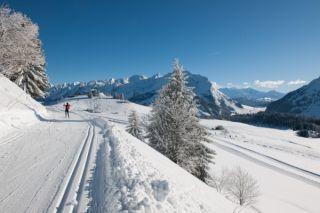 Domaine du ski de fond du Plateau de Beauregard