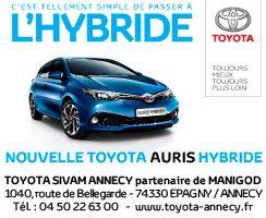 Toyota partner