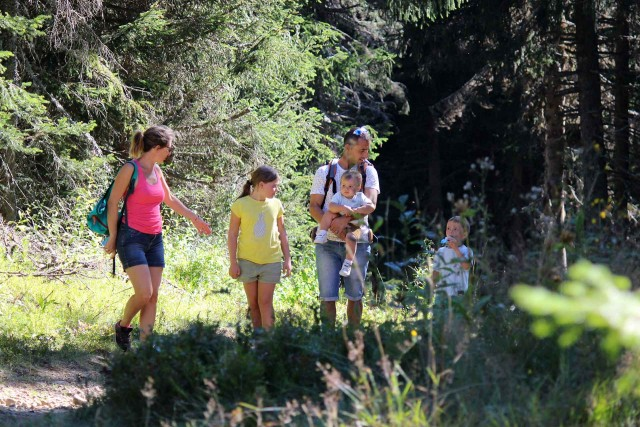 Parcours Ludique en Forêt