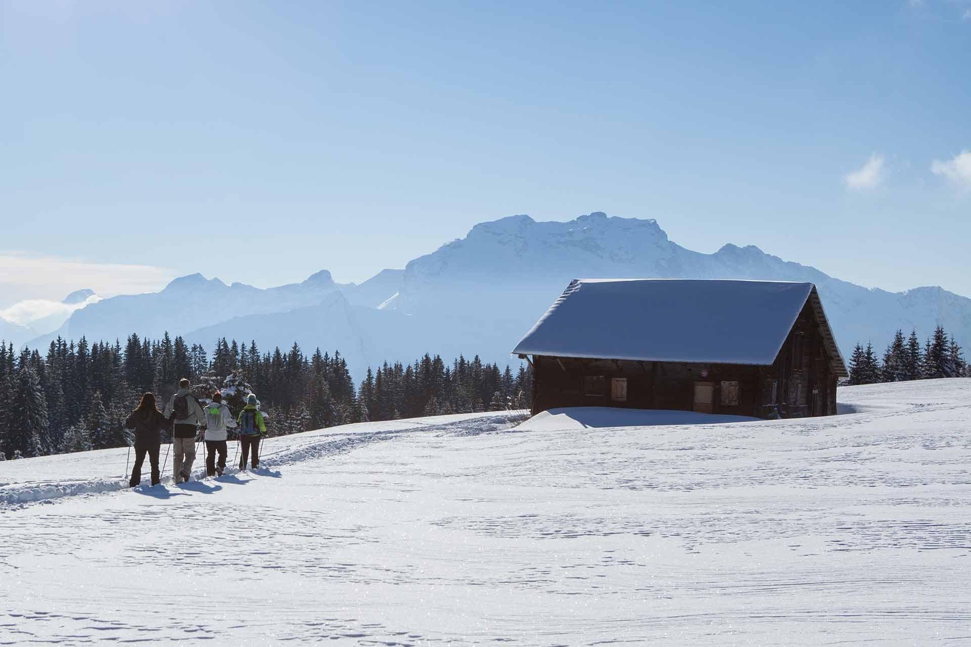 Schneeschuhe - © Verpaelst